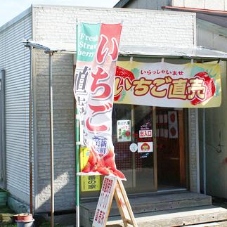 斉藤ファーム直売所